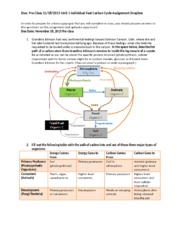 Global Cycling Individual Dropbox Assignment 1 - Carbon Cycle.docx