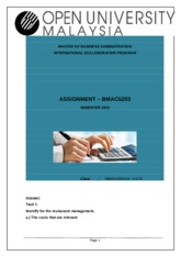 28-BMAC5203 Assignment Accounting