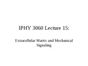Lecture 15 Extracellular Matrix and Mechanical Signaling