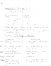 COMM 3135 - 2 Person Teams Notes