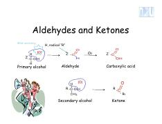 aldehyde and ketone