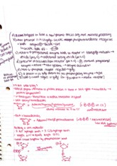 Intro to Physiology Class Notes  4