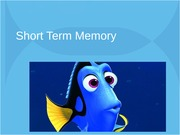 PSYCH 305 Short term memory