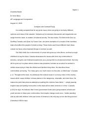 summer reading essay.rtf