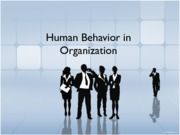 Human Behavior in Organization (Presentation)