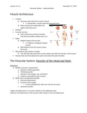 Lecture 13, 14 Muscular System Head and Neck