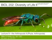 Lecture 9-The Arthropods II-Slides-2.pdf