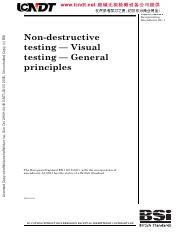 BS EN 13018-2016 Non-destructive testing-Visual testing