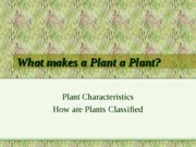 what_makes_plant