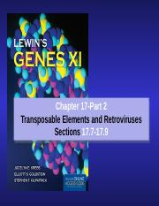 chapter 17-Eukaryotic transponsons_Part 2-2017