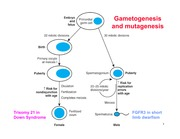 Lecture 6-Disease gene discovery