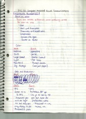 Multimedia Foundations Notes