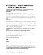 International Covenant on Economic, Social & Cultural Rights