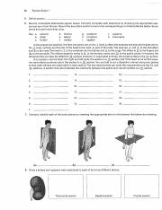 review sheet 1 the language of anatomy Browse and read review sheet exercise 1 the language of anatomy answers review sheet exercise 1 the language of anatomy answers in what case do you like reading so much.