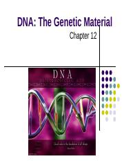 Chapter 12- Molecular Biology of the Gene