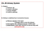 Ch. 26 Text-Urinary