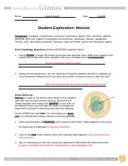 Student Exploration- Meiosis (ANSWER KEY).docx - Student ...