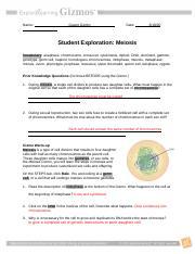 Student Exploration- Meiosis (ANSWER KEY).docx - Student ...