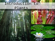 botony- Intro to Plants WITH VOICEOVER