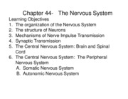 Chapter 44 The Nervous System 2011 new(2)