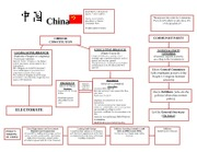 China Government Structure