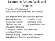 Lecture 4_proteins.ppt