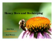 Honey bees and beekeeping Lecture