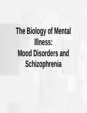 biology and neurochemistry lecture with focus on depression and schizophrenia.ppt