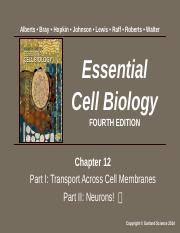 Cell Mol Biology Chapter 12 Pt 1 and 2 Summer 2017