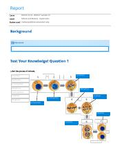 Mitosis and Meiosis - Exploration report
