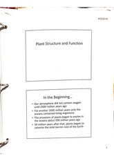 Notes on plant structure and function