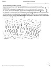 Cell_Membrane_and_Transport_Coloring.pdf
