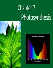 Ch. 7- Photosynthesis(1)(1) (1)