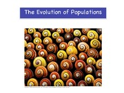 22_EvolutioninPopulations2a1_forupload
