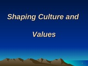 IV -  Culture and Values