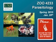 ZOO4233_Jan_20_Parasitic_Chordata_III