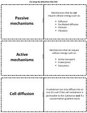 Flashcards_Cell_Physiology.pdf
