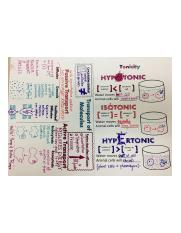 950fc57888239a3d0d2ffd0d39bcf3da--biology-doodle-notes-school-notes-biology.jpg