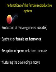 Biol 252  Female reproductive system fall 15