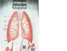 normal vs COPD