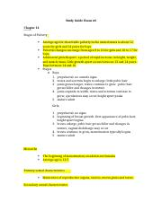 Brief Study Guide Exam 4