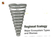 ENST 360 Lecture 6 Regional Ecology