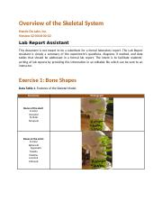 bio235_lab_report_overview_skeleton_Sherby_K.docx.docx