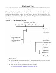 pogil phylogenetic trees - Phylogenetic Trees How do the ...