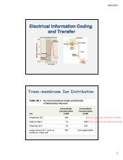 Lecture 12 Electrical Information Coding and Transfer.pdf