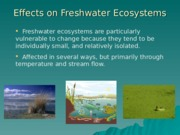 09 - Effects on freshwater systems