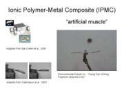 Artificial Muscle