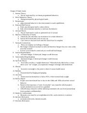 Chapter 8 Study Guide.docx