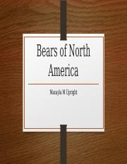 Bears of North America.pptx
