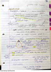 Freud Psychosocial Theory Notes